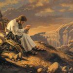 Ni ange, ni bête… la joie d'être un humain